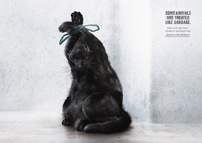 Startling Animal Welfare Campaign Shows Pets as Garbage Bags