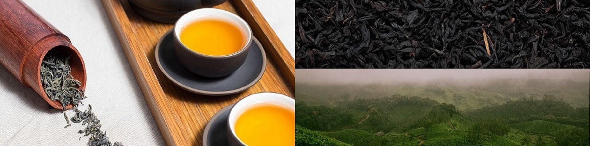 Branding Over Tea