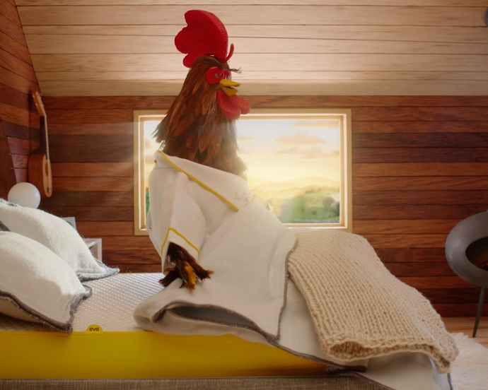 Well-Rested Rooster Spreads the Joy of Having a Good Night's Sleep